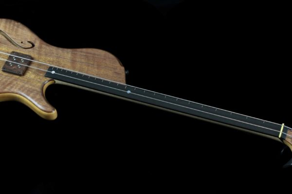 2 String Gemini front